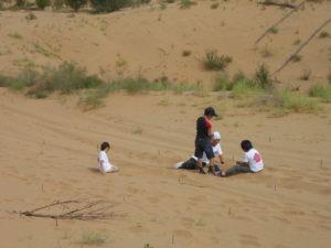 中国 緑の協力隊 クブチ砂漠沙漠植林