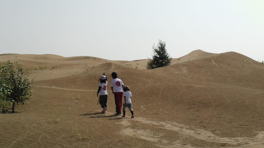 恩格貝沙漠