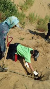 沙漠 クブチ砂漠 植林片づけレッスンハンナリ 大阪 子育てママのための