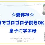 ☆夏休み☆家でゴロゴロ子供もOK!| 片づけコンサルタント 片コンハンナ